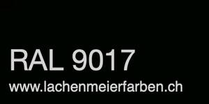 Farbkarte Norm Ral Karte Classic K6 RAL 9017 Tiefschwarz A4 Einzelbogen