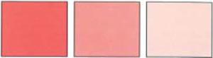 Pintasol Farbkonzentrat E-Wl 31 Rot