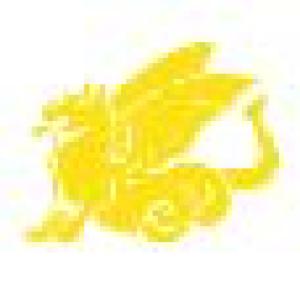 China Tusche flüssig Nan King C 097 Gelb