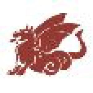 China Tusche flüssig Nan King C 089 Siena Gebrannt