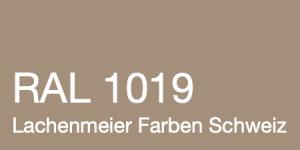 Farbkarte Norm Ral Karte Classic K6 RAL 1019 Graubeige A4 Einzelbogen Original